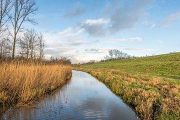 Kleurrijk landschap langs dijk van Ruud Morijn