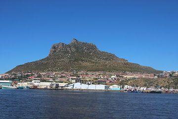 Haven in Zuid-Afrika van Quinta Dijk
