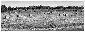 Country side Lithuania von Arnold van der Borden
