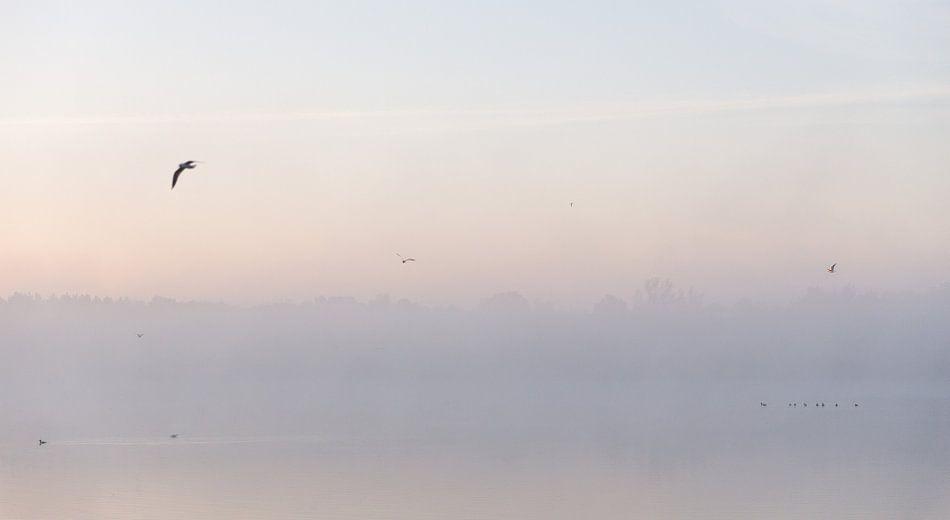 Ochtend Mist Over Meer van Studio W&W
