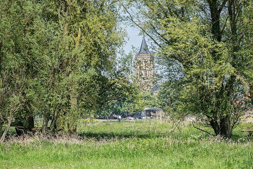 Gezicht op Gorinchem sur Ruud van der Lubben