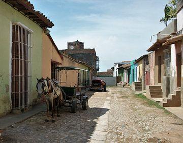 paard en wagen Cuba van Michel van Vliet