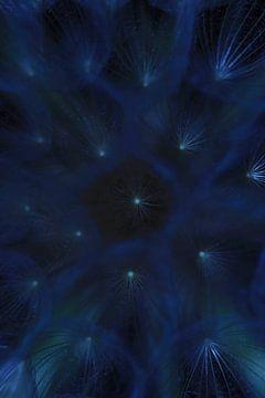 Pusteblumensterne am Himmel von Lynlabiephotography