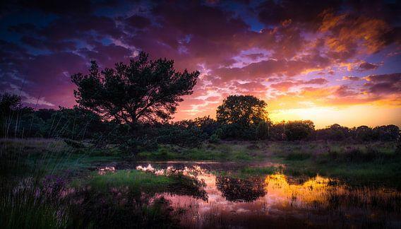 Zonsondergang op het Buurserzand van Martijn van Steenbergen