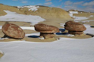 Ah-Shi-Sle-Pah Wilderness Study Area in de winter met grappige stenen figuren, New Mexico, USA van Frank Fichtmüller