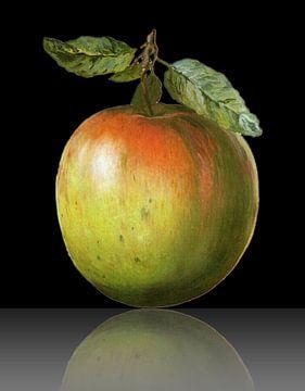 Apfel sur Gertrud Scheffler