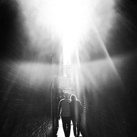 Wandeling naar het licht van Joris Louwes