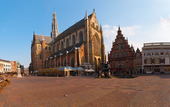 Cathedral Grote Bavo  Kerk Haarlem Holland van Brian Morgan