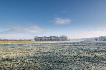 Nederlands landschap van Johanna Blankenstein