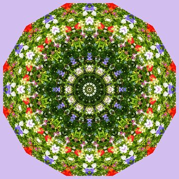 Colorful wildflowers van Barbara Hilmer-Schroeer