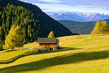 Op de Seiser Alm - Alpe di Siusi van Gisela Scheffbuch