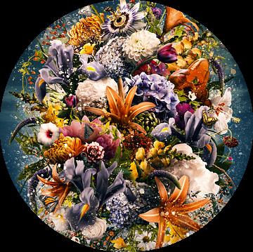 Amaranthine van Jesper Krijgsman
