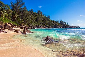Plage de rêve Anse Intendance - Mahé - Seychelles sur Max Steinwald