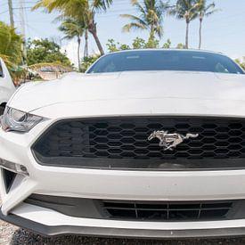 Het front van een Ford Mustang van Erik de Rijk