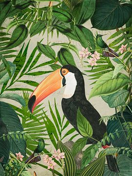 Dschungel Tukan von Andrea Haase