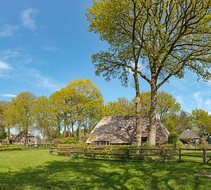 Boerderij tussen de bomen, Diever, , Drenthe
