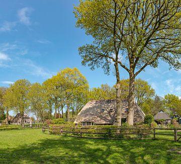 Bauernhaus mit Bäumen rundum, Diever, Drenthe, Niederlande von