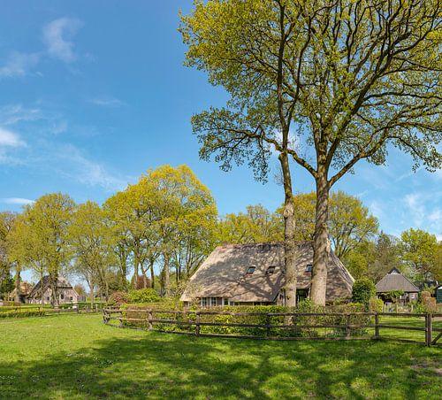 Boerderij tussen de bomen, Diever, , Drenthe van