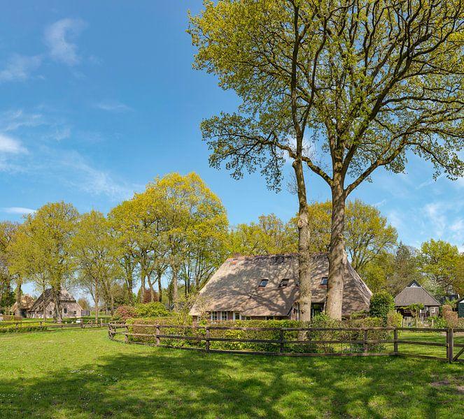 Boerderij tussen de bomen, Diever, , Drenthe van Rene van der Meer