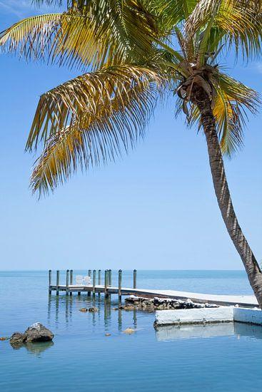 FLORIDA KEYS Heavenly View