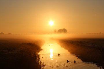 Magisch ochtendgloren van Ruth Van Nierop - Dirks