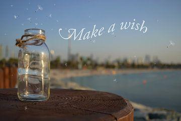 Doe een wens van zwergl 0611