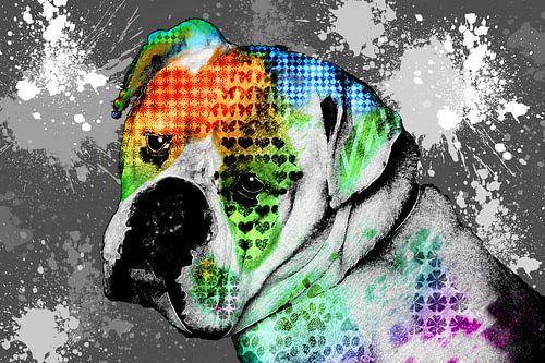 Abstract Bulldog