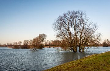 Nederlandse polder overstroomd van Ruud Morijn