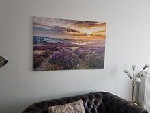 Klantfoto: Bloeiende heide op de Posbank van Sander Grefte, op canvas