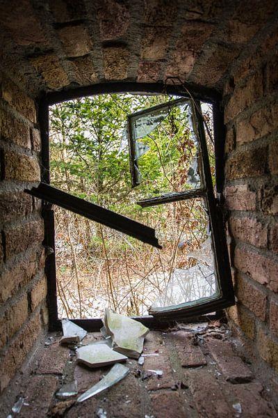 Gebroken raam van denk web