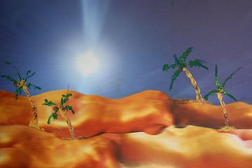 DICX The Nude Desert van Dick Evers