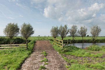 Pad met bruggetje over vliet in polder Alblasserwaard von Beeldbank Alblasserwaard