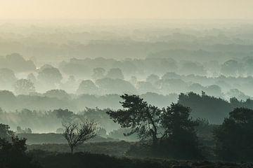 Adembenemend uitzicht vanaf de Archemerberg van Ron Poot