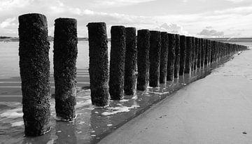 Wellenbrecher am Strand von Zeeuws Vlaanderen 2 von Adriana Zoon