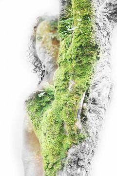mit der Natur gehen von Cor Heijnen