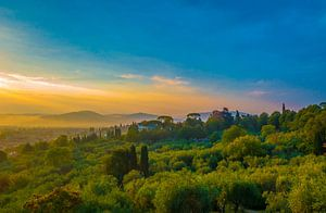 Sunrise - Florence van