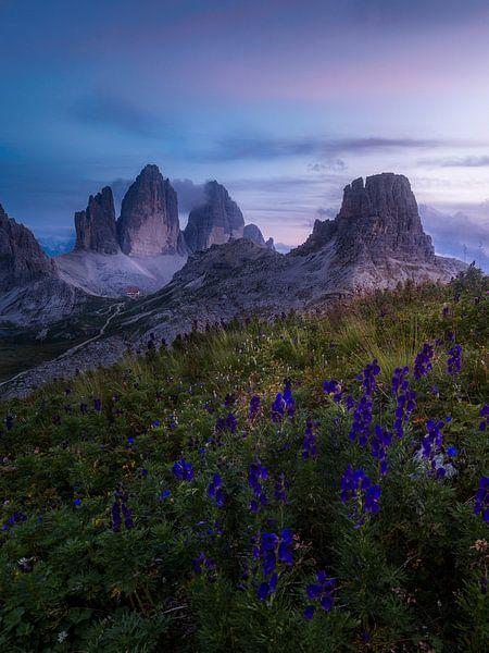 Sommer in den Dolomiten von Thomas Weber