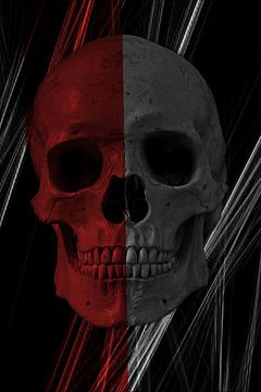 Pirate Skull Art van Nicky`s Prints