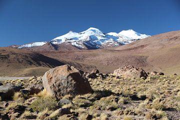 Altiplano Bolivien mit Blick auf die Gipfel der Anden von A. Hendriks