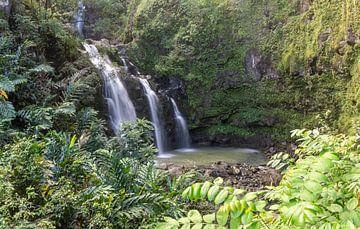 Waterval aan de Road to Hana van Reis Genie