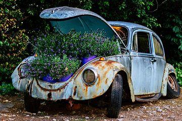 Alten VW-Käfer recyceln von Clazien Boot