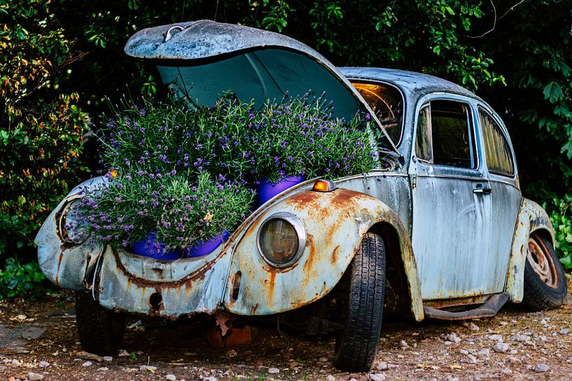 Recycle oude VW kever van Clazien Boot