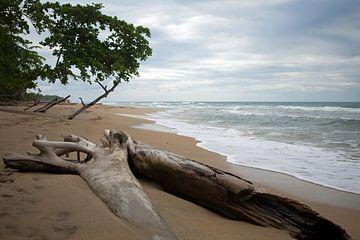 Karibikküste - Costa Rica von t.ART