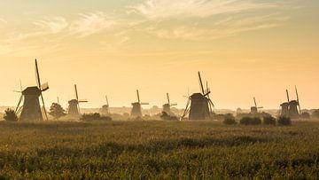 Übersicht über die Windmühlen von Kinderdijk von Daan Kloeg