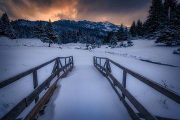 Die Leidenschaft des Winters von Konstantinos Lagos