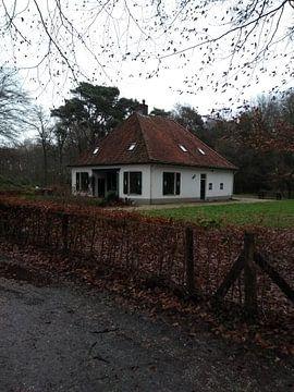 Het monumentale huisje achterin het schaffelaarse bos van Wilbert Van Veldhuizen