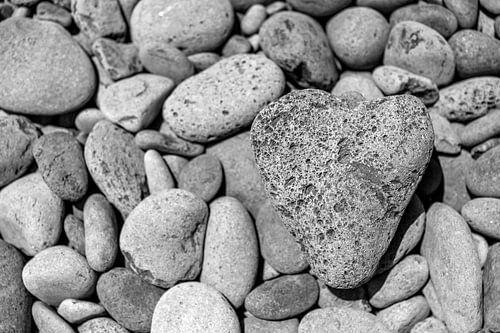 Heart of stone van Thomas Herzog