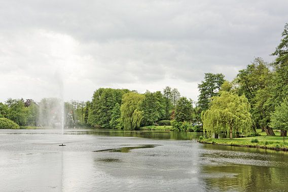 A Cloudy Day in the Park