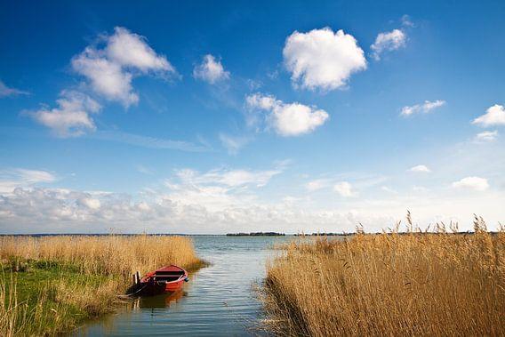 Landscape on a lake