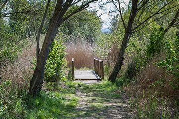 een bruggetje in spanje in het voorjaar van Compuinfoto .